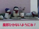 NEC_0860-2.jpg